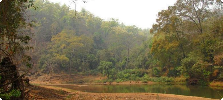 Koina river flowing along forests and hills in Jharkhand