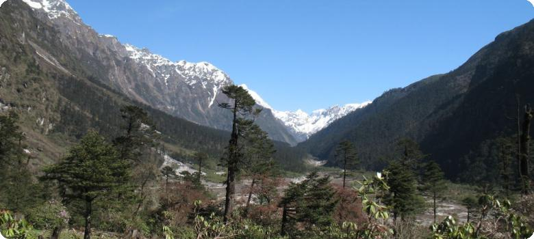 Approaching Yumthang valley from Lachung