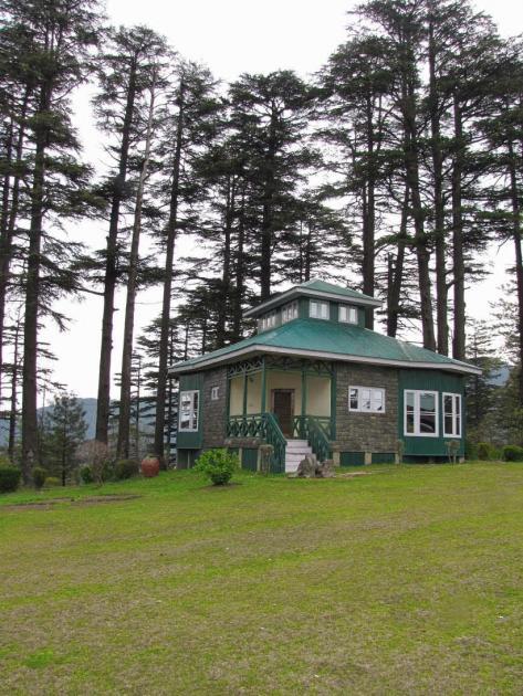 Green roofed hut