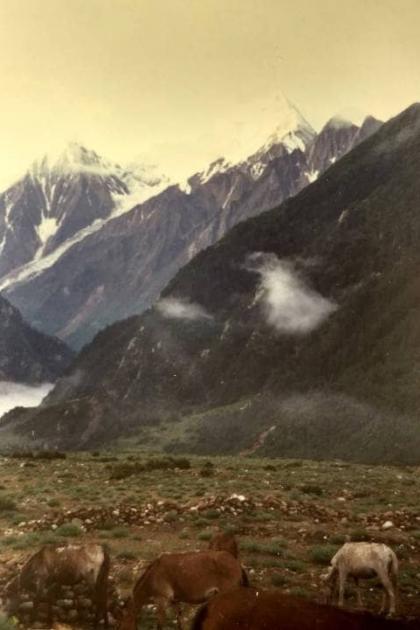 View from Gunji campsite