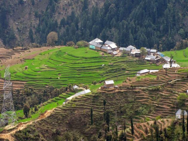 A neat Himachali village