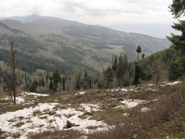 Far side hill