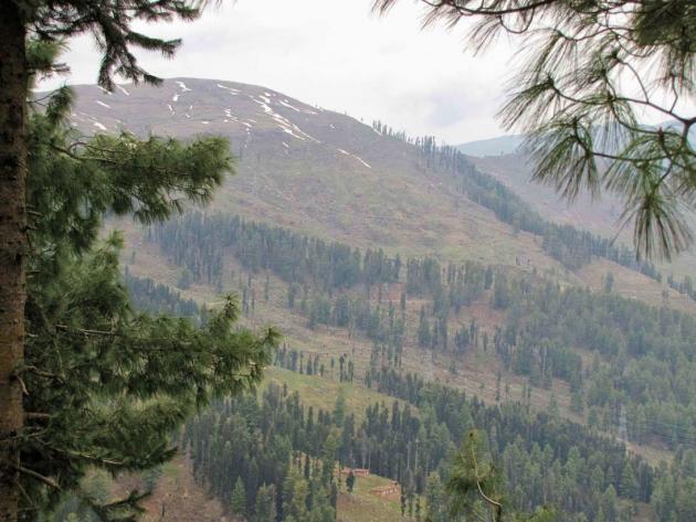 Framed hill