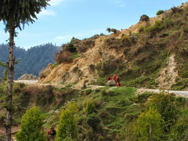 Himachali women on their way home