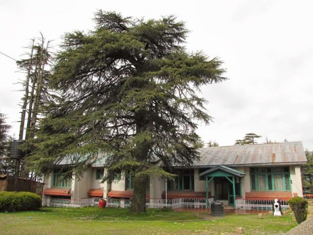 Patnitop guest house