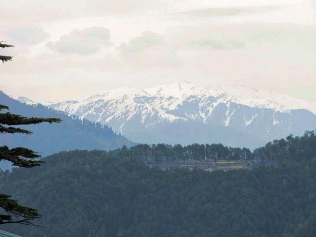 Snow view from Patnitop