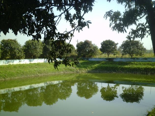 Pond near Adinath temple