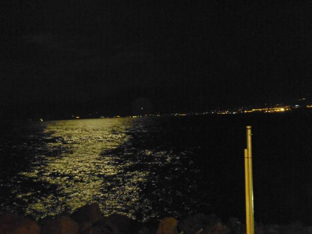 Sea awash with moonlight