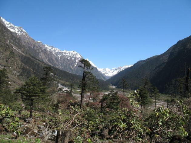 Approaching Yumthang valley