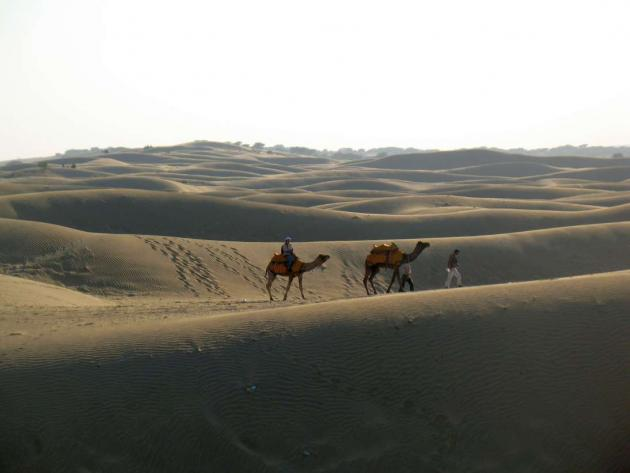 Waves of sand dunes