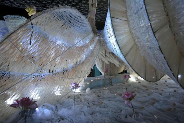 Feathered lake, Kolkata Durga Puja 2015