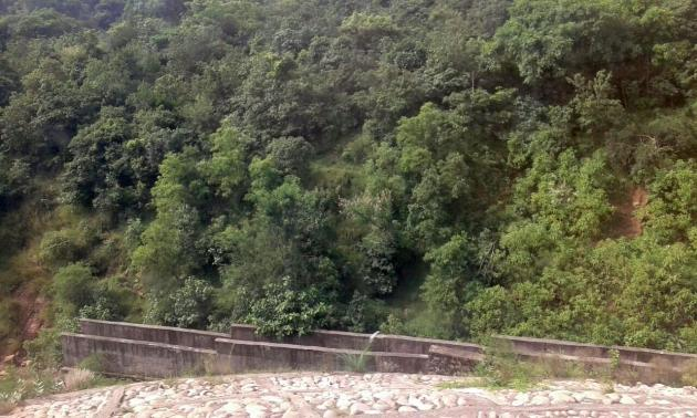 Green hillsides from train to Udhampur